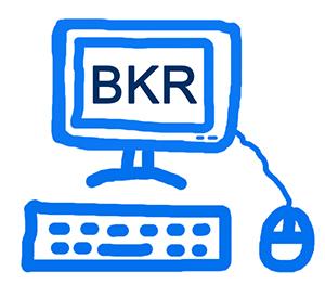 BKR opvragen online